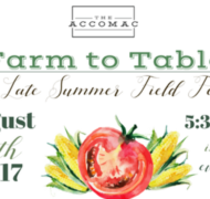 Farm to Table: A Late Summer Field Feast