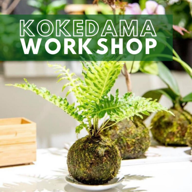 Kokedama Workshop February 28 at Nissley Winery